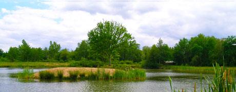 Mesures compensatoires des atteintes à la biodiversité