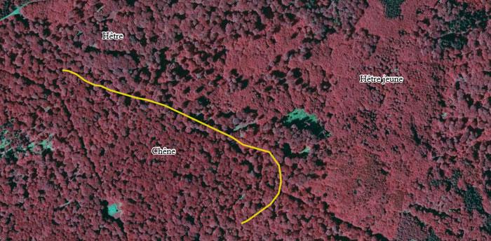 Photographie aérienne IRC sur le département de la Moselle