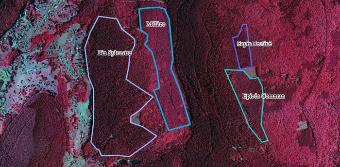 Photographie aérienne IRC sur le département du Bas-Rhin